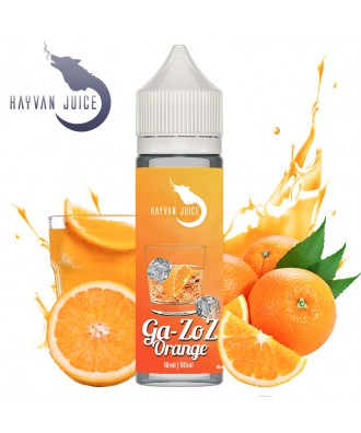 Hayvan Juice- Ga-Zoz Orange